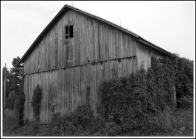 barn front view by shod