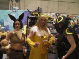 Small Eeveeloution Group Cosplay by wolfforce58