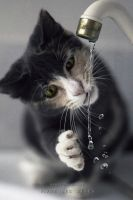 Cosette by VivreLesReves