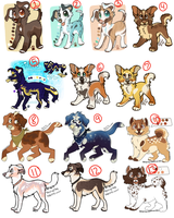 Lucky Thirteen! (left over adopts!) points/USD by xWolfPrincex