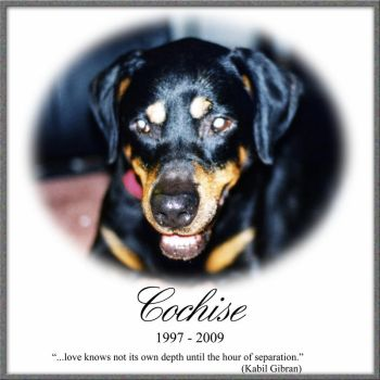 Tribute to Cochise by cosmicship
