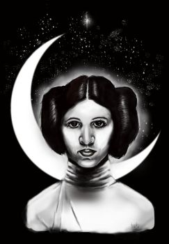 Princess Leia by Amacdesigns