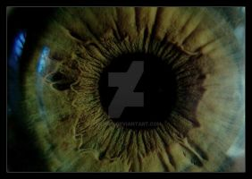 eye xx macro by 01-11-89