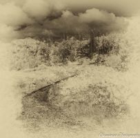 Antique IR - Forest and Clouds by Okavanga