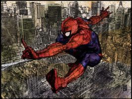 Maleev Spider Man color by Denis-Mello