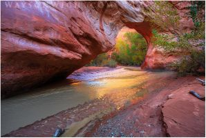 Coyote Natural Bridge by tourofnature