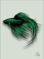 Emerald Fishie by ciomaria