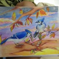 Xmas Gifts- Bluejays and Peanuts by lightfeather5632