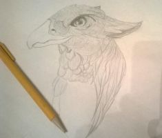 Griffin Drawing by versaillesjewels