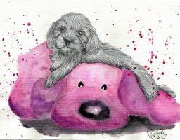 Little Puppy on pink Teddy by Cindy-R