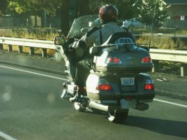 GoldWing cruising on freeway by finhead4ever