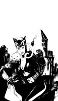 Roof Top Catwoman by Peter-v-Nguyen