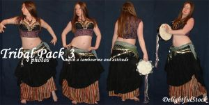 Tribal Pack3 Delightfulstock by DelightfulStock