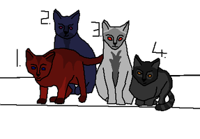 Four cat Adoptables by Harry-Potter-Addict