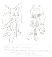 Sonic meets Minda by SonicGal390