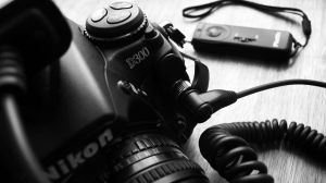 NIKON. by Canon by nogooduseless
