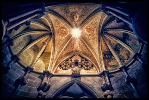 Cathedral of Lausanne by calimer00