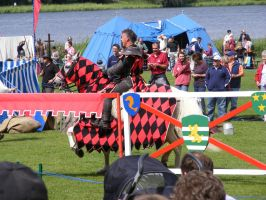 Jousting - Knight 87 by Axy-stock