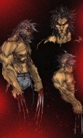 MT wolverine color by magoz1