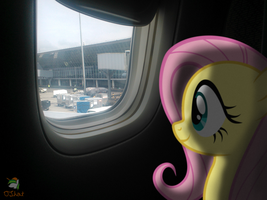 Back To Flying Again by OJhat