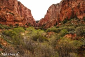 Red Cliffs to the End by mjohanson
