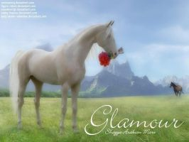 Glamour by JuneButterfly-stock