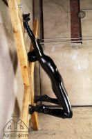 Zentai submission 3 by AgniDog
