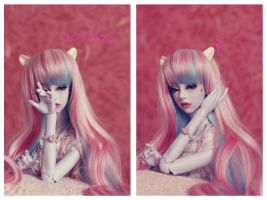 Sweet cat Vilora by SelenaAdorian