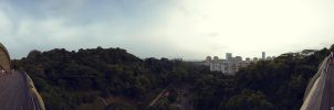 view from henderson waves by Togusa208
