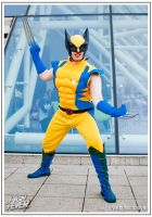 Cosplay of the Week 11-03-06 by CosplayFever