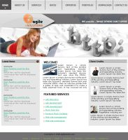 Agile E Solution Template01 by drmaxmad