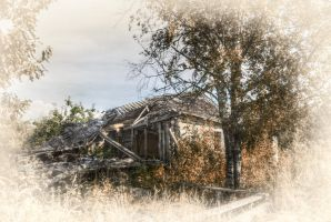 Lost and Forgotten III by xrust