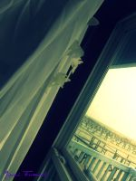 At the Window by Blackmystik
