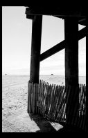 Seal Beach by Rutabaga