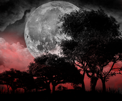 Blood Moon Landscape by Drace-Sylvanian