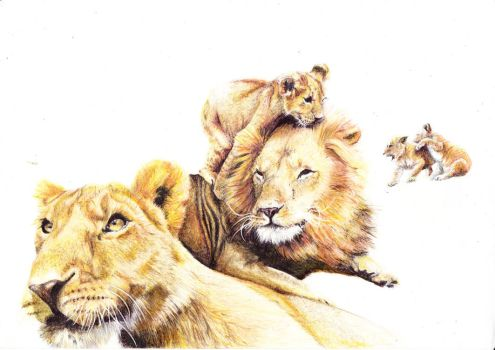 Lionsfamily by MaltePawelek