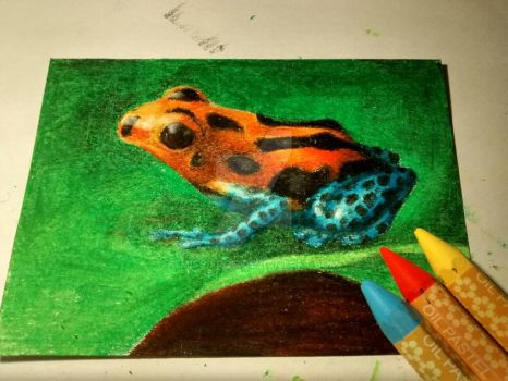 poison frog by miss-frog