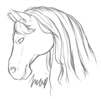 Horse by Imalune