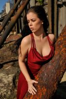 Stacey - red dress 1 by wildplaces