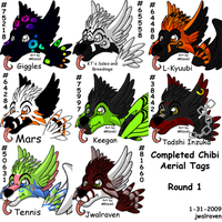 Completed Aerial Waja Tags by JwalsShop