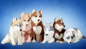 Group puppies by Leyver
