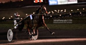 Harness Racing 40 by JullelinPhotography