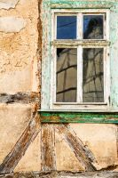 window by stachelpferdchen