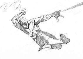 DSC Spidey sketch by Paul-Moore