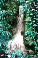 Climatron falls, after by gamergoth
