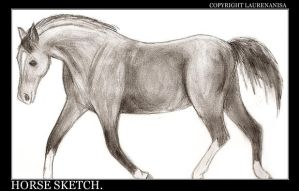 Horse Sketch by LaurenAnisa