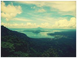 taal by geyl