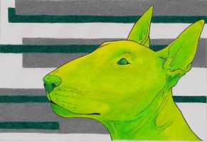 Bull Terrier by sporadicsketcher