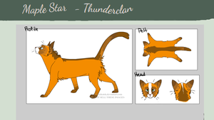 Maplestar, My thunderclan OC by Lily-Song
