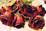 wilted roses by Exkai